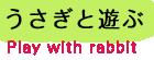うさぎと遊ぶ Play with rabbit