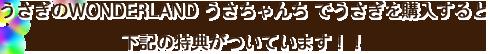 うさぎのWONDERLAND「うさちゃんち」でうさぎを購入すると下記の特典がついています!!